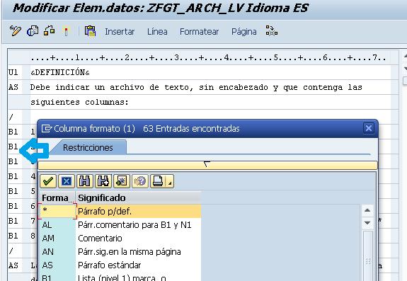 Ingresar la documentación y formato del campo Z.